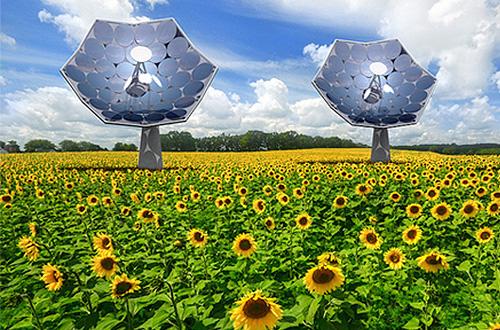 Bunga Matahari - Listrik